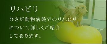 http://www.hisada-ah-kyoto.jp/original11.html